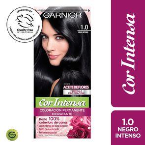 Garnier 1.0 Negro Intenso Permanente Hidratante