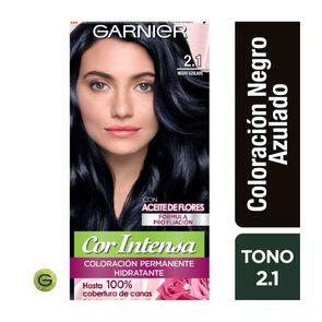 Coloración Cor Intensa 2.1 Negro Azulado Garnier
